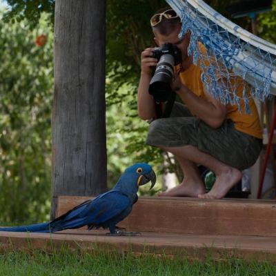 Faça fotos incríveis sem sequer precisar sair da pousada