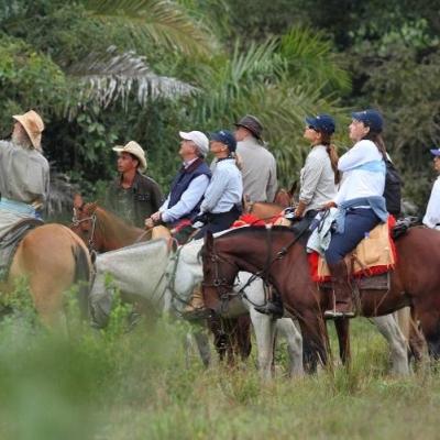 Enjoying nature on a horse