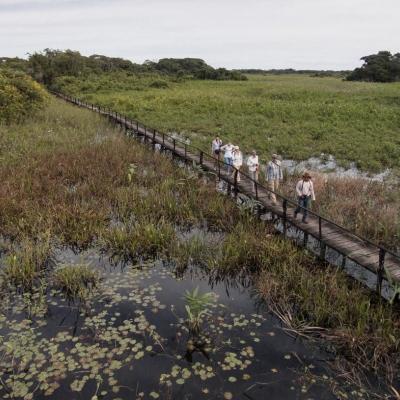 Pantanal 4 Dias / 3 Noites