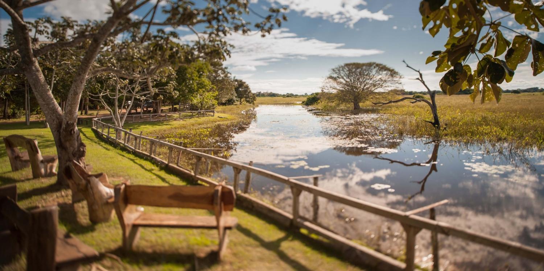 A época das águas no Pantanal