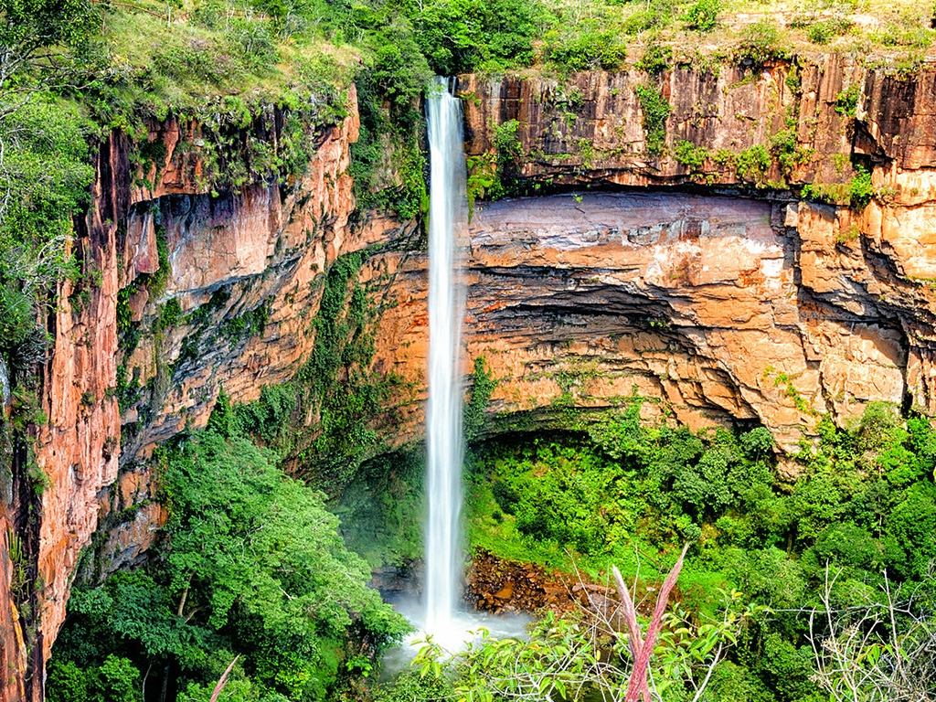 Pantanal and Savannah 6 days / 5 nights