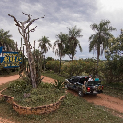 Foto Safaris em veículos apropriados