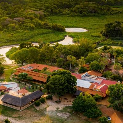 O Pantanal em 2021!