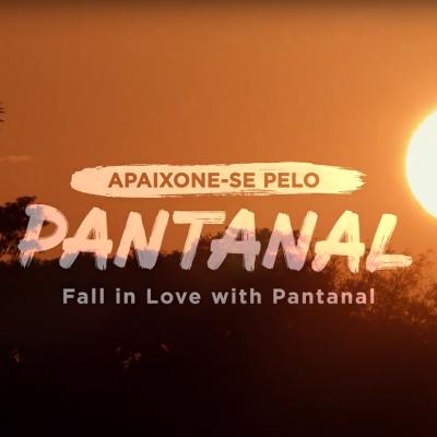 Venha conhecer o Pantanal!